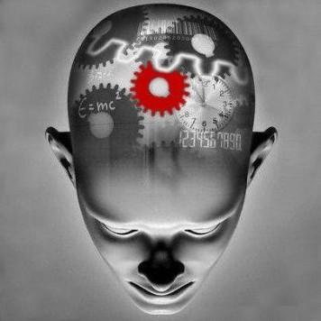 Самые интересные факты о психологии